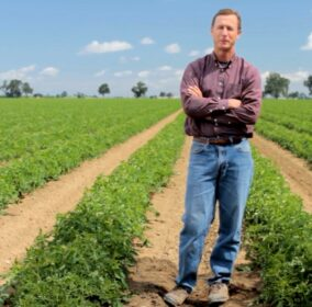 Frank Muller standing in one of his tomato fields in woodland ca