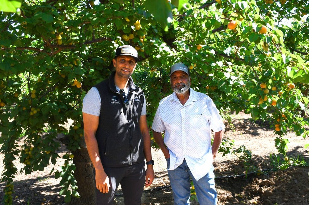 Naz and Sarbjit Athwal apricot growers in Westley, CA